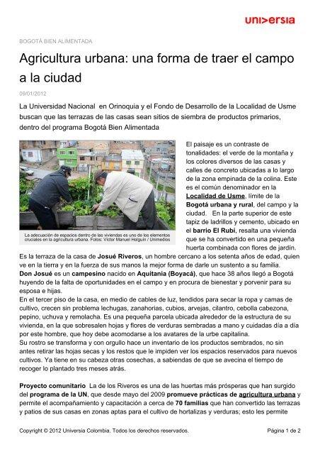 Agricultura Urbana Una Forma De Traer El Campo A La Ciudad
