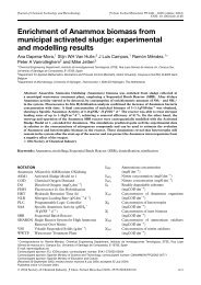 Enrichment of Anammox biomass from municipal activated sludge ...