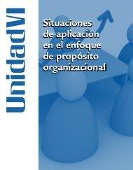 VI Situaciones de aplicación en el enfoque de proposito ...
