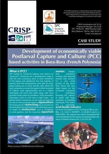 PCC - International Coral Reef Initiative