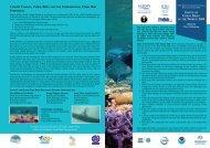 WORLD: 2008 - International Coral Reef Initiative