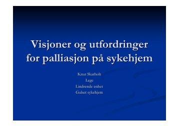Visjoner og utfordringer for palliasjon på sykehjem - Ous-research.no