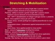 Stretching - Cold