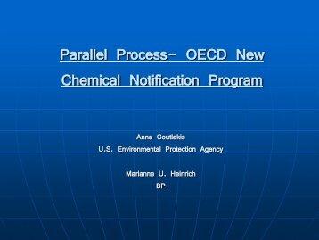 Marianne Heinrich, BP Chemicals - SOCMA