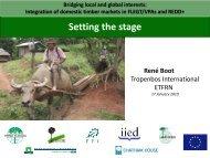 Integration of domestic timber markets in FLEGT/VPAs and REDD+