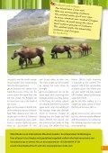 P-O Life n°29 (11.8MB) - Anglophone-direct.com - Page 7