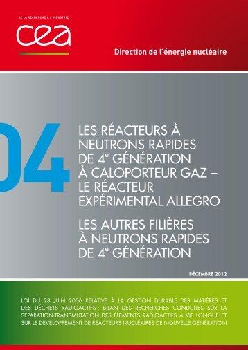 Tome 4 : « Les réacteurs à neutrons rapide de 4ème ... - CEA