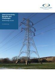 Executive Summary - World Energy Council