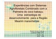 Seminario_Ronaldo_Carneiro [Modo de Compatibilidade] - Embrapa
