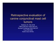 Retrospective evaluation of canine conjunctival mast cell tumors