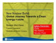 New Nuclear Build: Global Journey Towards a ... - Southern Company