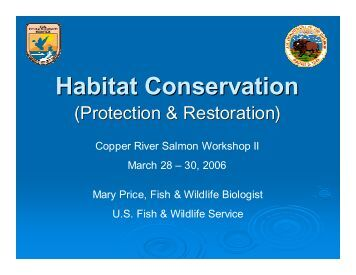 Habitat Conservation (Protection & Restoration) - Ecotrust