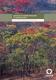 Managing the Miombo Woodlands of Southern Africa - PROFOR