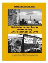 Rethinking Nuclear Energy and Democracy After September 11, 2001