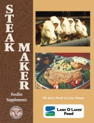 steakmaker program brochure - Beeflinks