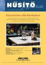 husito_jegkockak_2011.pdf