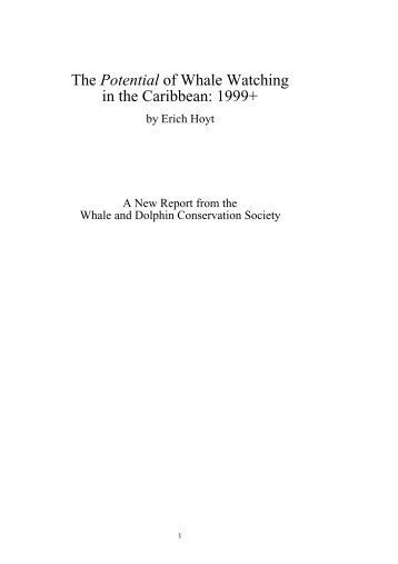 The Potential of Whale Watching in the Caribbean: 1999+