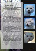 DE PUCHEROS Y SARTENES - Page 3