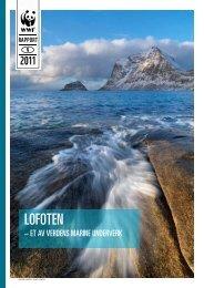 Lofoten – et av verdens marine underverk - WWF