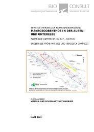 Bericht Fahrrinne Unterelbe 2001