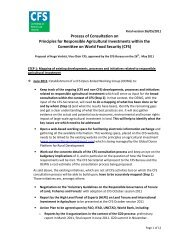 CFS Proposal for Process of Consultation on rai_May 2011 - CSM