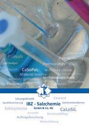 Firmenbroschüre - IBZ - Salzchemie GmbH & Co. KG