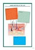 Solen og huden (Elevmateriale) - Experimentarium - Page 5