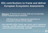 Ecosystem assessments - Enviro-i-Fórum 2013