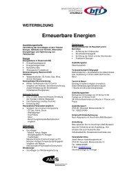 Infoblatt Erneuerbare Energien - BFI NÖ