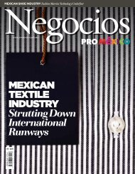 Mexican TexTile inDUSTRY Strutting Down ... - ProMéxico