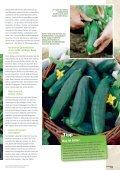 Neun Fragen rund um die Gurke - Gurken selber - Sperli - Seite 3