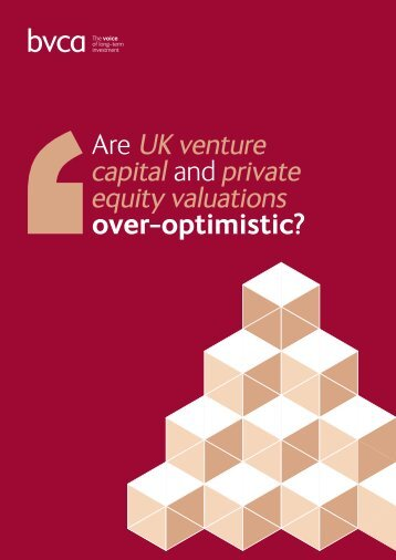 Are UK venture capital and private equity valuations over-optimistic?