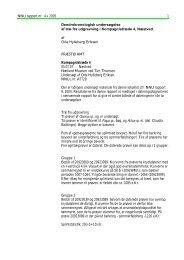 NNU rapport nr. 4 C 2005 1 Dendrokronologisk undersøgelse af træ ...