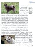 Die Fellfarbe beim Spitz Teil 3 - Liebhaber des Deutschen Spitzes eV - Seite 2