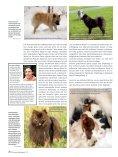 Die Fellfarbe beim Spitz Teil 3 - Liebhaber des Deutschen Spitzes eV - Seite 5
