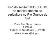 Uso do sensor CCD-CBERS no monitoramento da ... - INPE/OBT/DGI