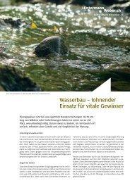 Wasserbau – lohnender Einsatz für vitale Gewässer - Hintermann ...