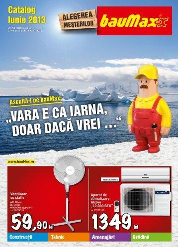 Catalog BAUMAX varianta PDF - Infoo.ro