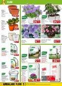 Catalog BAUMAX varianta PDF - Infoo.ro - Page 4