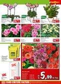 Catalog BAUMAX varianta PDF - Infoo.ro - Page 5