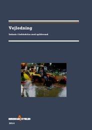 2014 Vejledning om indsats i forbindelse med spildevand