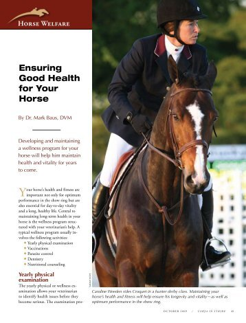 Ensuring Good Health for Your Horse - ushja