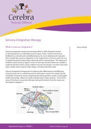 Sensory integration therapy - Cerebra