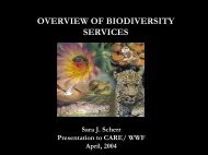 OVERVIEW OF BIODIVERSITY SERVICES - Ecosystem Marketplace