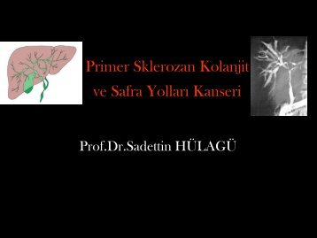 Primer Sklerozan Kolanjit ve Safra Yolları Kanseri - Prof. Dr. Sadettin ...