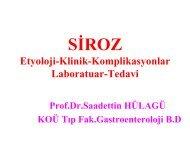 Siroz - Prof. Dr. Sadettin Hülagü