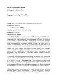 A közszolgálati életpálya európai és hazai dimenziói - Közigazgatás ...