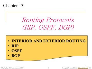 Routing Protocols (RIP, OSPF, BGP)