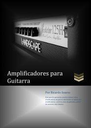 Amplificadores de guitarra - Landscape Audio