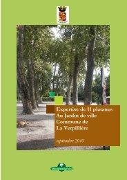 Expertise de 11 platanes Au Jardin de ville Commune de La ...